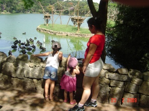 Passeando no Zoologico